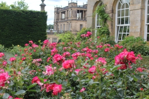 Chatsworth house and a smidgen of the garden